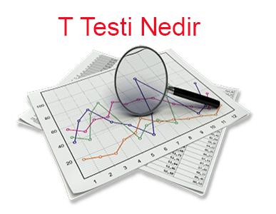 T Testi Nedir
